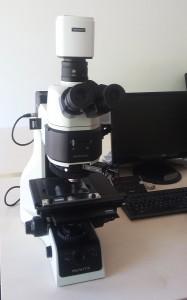 truechrome-microscope